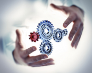 Kariérní cesty v řízení projektů, programů a portfolií